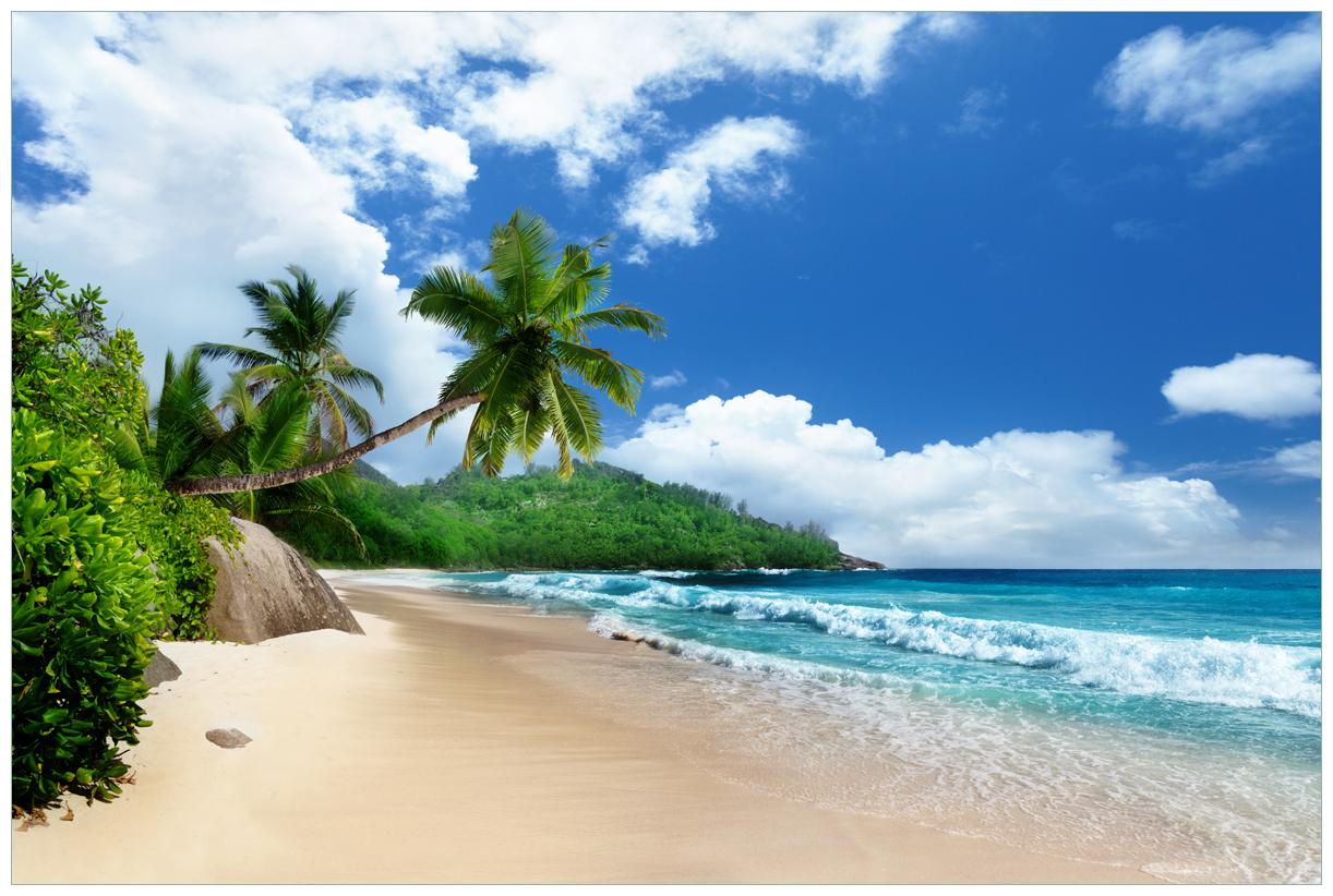 Vliestapete Urlaub auf den Seychellen unter Palmen am Sandstrand – Bild 1