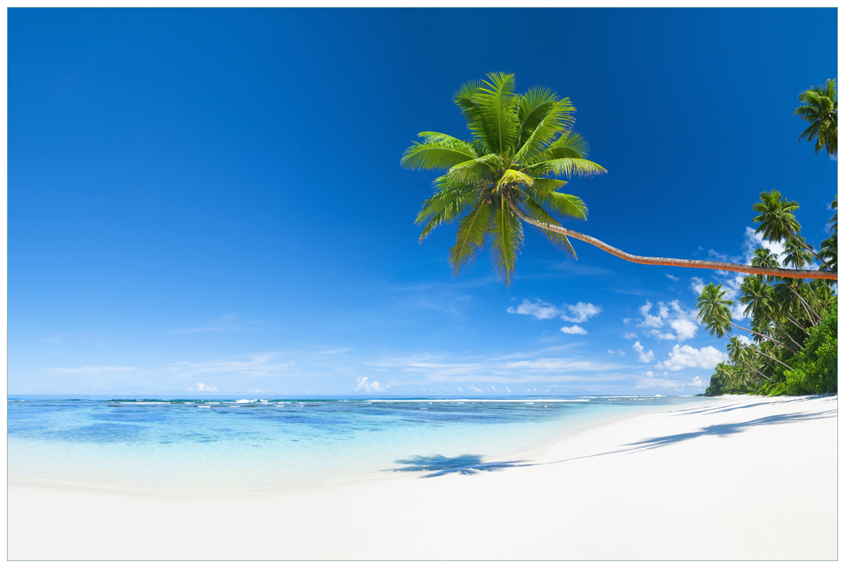 Vliestapete Weißer Sandstrand am Meer - Ein Traum unter Palmen – Bild 1