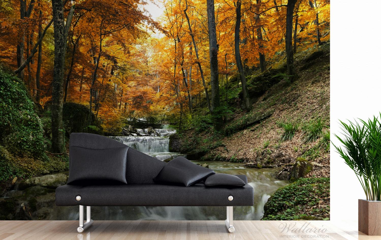 Vliestapete Kleiner Bach über Steine im Herbstwald – Bild 3