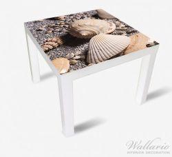 Möbelfolie Muscheln am Strand – Bild 2