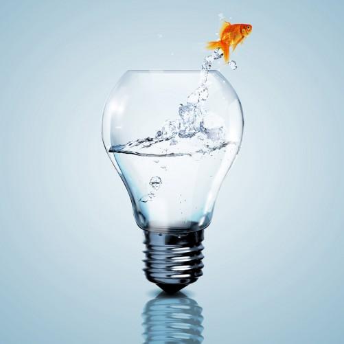 Möbelfolie Goldfisch springt aus Aquarium – Bild 3