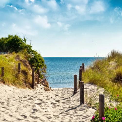 Möbelfolie Auf dem Sandweg zum Strand – Bild 3