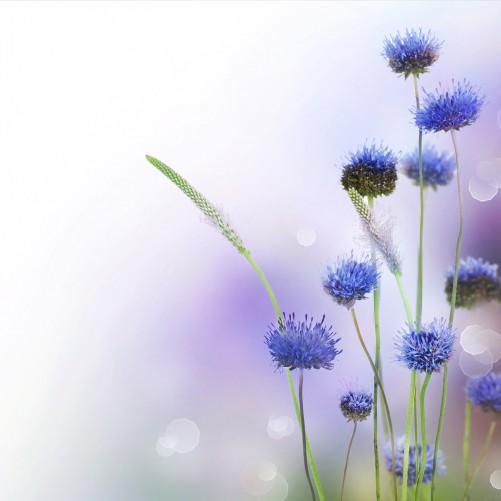 Möbelfolie Abstrakte lila Blume – Bild 3