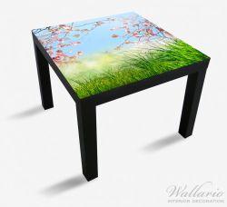 Möbelfolie Kirschblütenzweige und grüne Wiese- Frühling – Bild 1