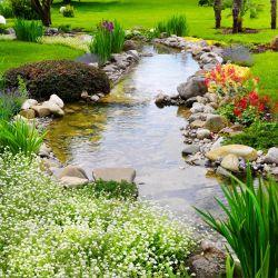 Möbelfolie Blumen am Teich – Bild 3