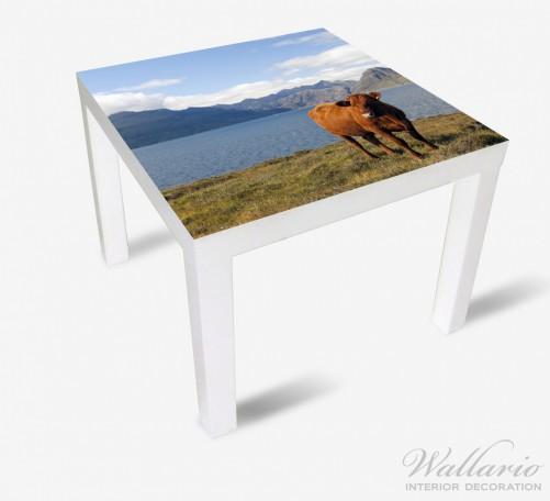 Möbelfolie Kuh in den Bergen – Bild 2