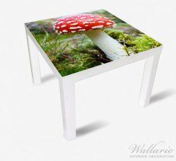 Möbelfolie Fliegenpilz im Wald – Bild 2