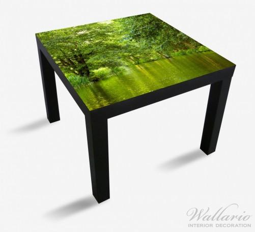 Möbelfolie Spreewald in Brandenburg, grüne Wälder und Spiegelungen im Wasser – Bild 1