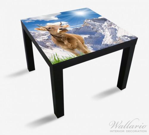 Möbelfolie Kuh im Sonnenschein in den Alpen – Bild 1