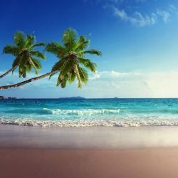 Möbelfolie Sandstrand auf den Seychellen - Urlaub unter Palmen – Bild 3