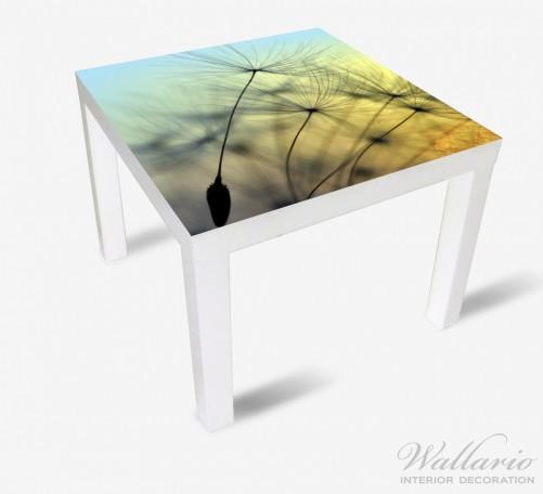 Möbelfolie Samen der Pusteblume in Nahaufnahme vor blauem Himmel – Bild 2