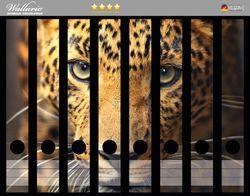 Ordnerrücken Sticker Leopard in Nahaufnahme bein Laufen