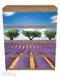 Möbelfolie Abstraktes lila Blumenfeld mit Lavendel – Bild 3