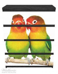 Möbelfolie Papageien auf dem dünnen Ast – Bild 1