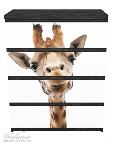 Möbelfolie Giraffenkopf – Bild 1