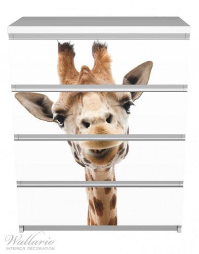Möbelfolie Giraffenkopf – Bild 2