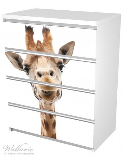 Möbelfolie Giraffenkopf – Bild 5