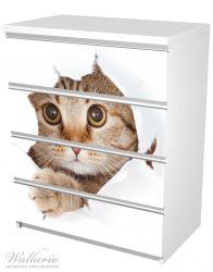 Möbelfolie Katze mit Blick nach vorn – Bild 5