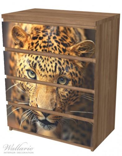 Möbelfolie Leopard in Nahaufnahme bein Laufen – Bild 6