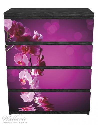 Möbelfolie Rosafarbene Orchidee, Blüten in pink – Bild 1