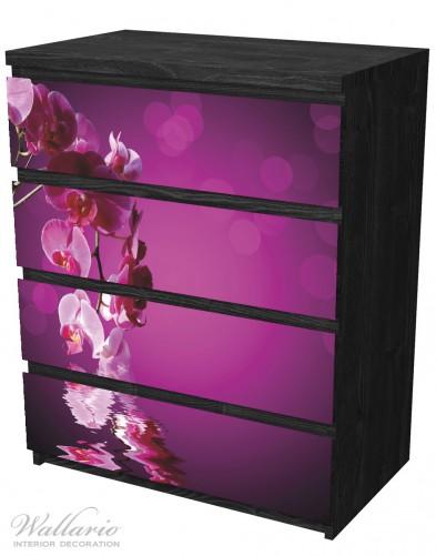 Möbelfolie Rosafarbene Orchidee, Blüten in pink – Bild 4