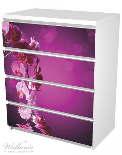 Möbelfolie Rosafarbene Orchidee, Blüten in pink – Bild 5