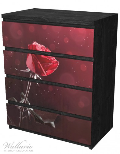 Möbelfolie Rote Rose Single – Bild 4