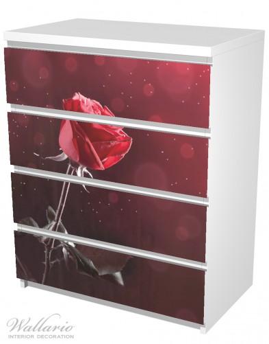 Möbelfolie Rote Rose Single – Bild 5