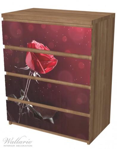 Möbelfolie Rote Rose Single – Bild 6