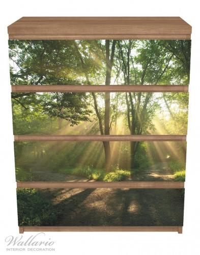 Möbelfolie Weggabelung im Sonnenschein – Bild 3
