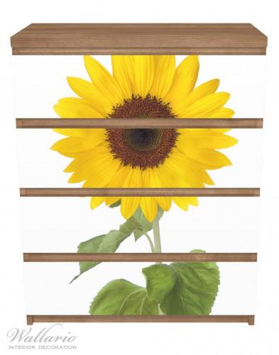 Möbelfolie Sonnenblume – Bild 3
