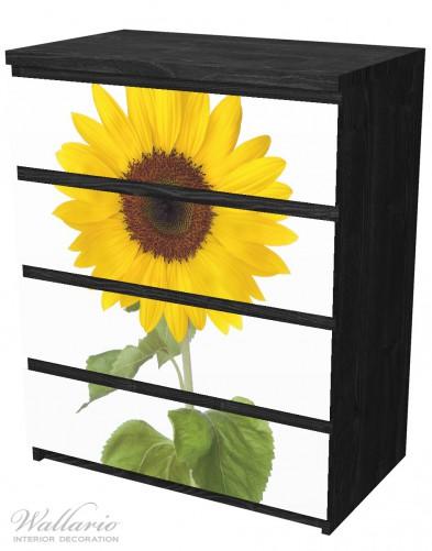 Möbelfolie Sonnenblume – Bild 4