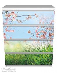 Möbelfolie Kirschblütenzweige und grüne Wiese- Frühling – Bild 2