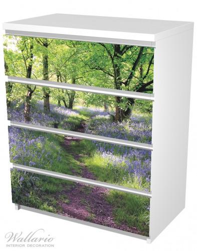 Möbelfolie Blaues Hasenglöckchen im Wald – Bild 5