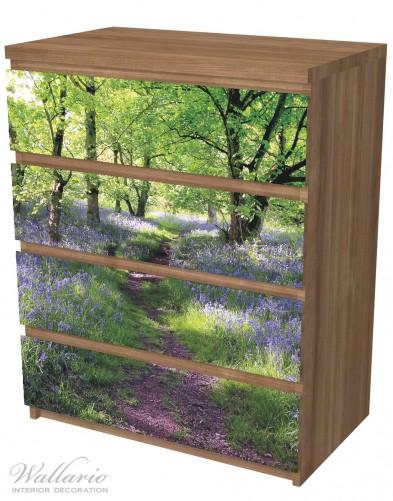 Möbelfolie Blaues Hasenglöckchen im Wald – Bild 6