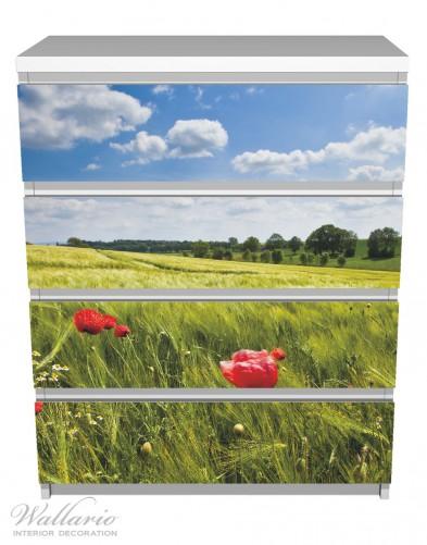 Möbelfolie Mohnblumenwiese auf grüner Wiese unter blauem Himmel – Bild 2