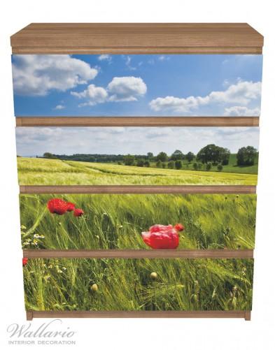 Möbelfolie Mohnblumenwiese auf grüner Wiese unter blauem Himmel – Bild 3