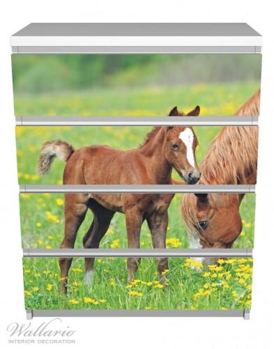 Möbelfolie Pferde auf der Koppel – Bild 2