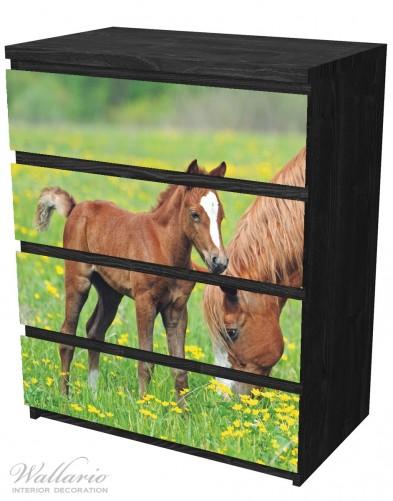 Möbelfolie Pferde auf der Koppel – Bild 4