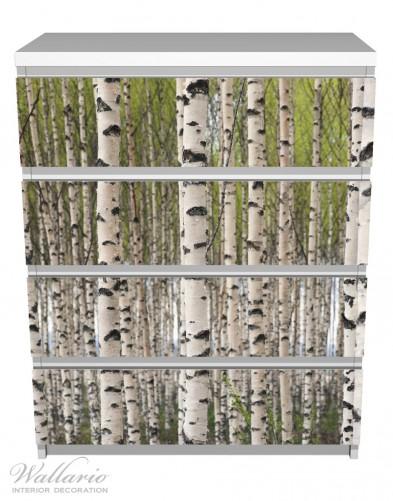 Möbelfolie Birkenwald - Baumstämme in schwarz weiß – Bild 2