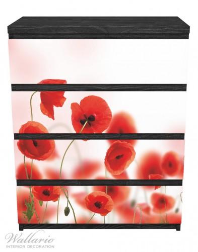 Möbelfolie Leuchtende Mohnblumen - Rote Mohnblumenblüten – Bild 1