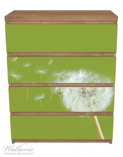 Möbelfolie Pusteblume auf der Wiese mit fliegenden Samen – Bild 3