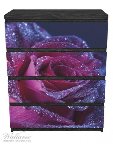 Möbelfolie Rote Rosenblüte im Regen – Bild 1