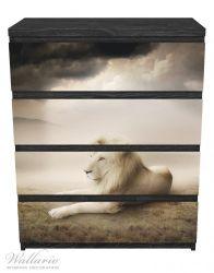 Möbelfolie Stattlicher ruhender Löwe in Afrika in Sepiafarben – Bild 1