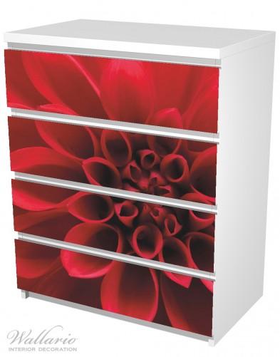 Möbelfolie Rote Dahlienblüte in Nahaufnahme – Bild 5