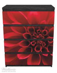 Möbelfolie Rote Dahlienblüte in Nahaufnahme – Bild 1