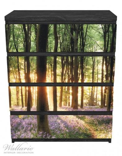 Möbelfolie Blaue Hasenglöckchen im Wald mit Sonnenstrahlen – Bild 1