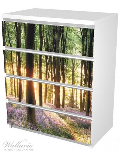 Möbelfolie Blaue Hasenglöckchen im Wald mit Sonnenstrahlen – Bild 5