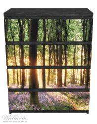 Möbelfolie Blaue Hasenglöckchen im Wald mit Sonnenstrahlen