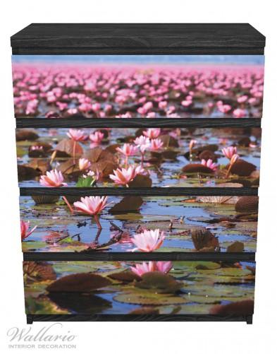 Möbelfolie Seerosenlandschaft mit rosa Blüten – Bild 1